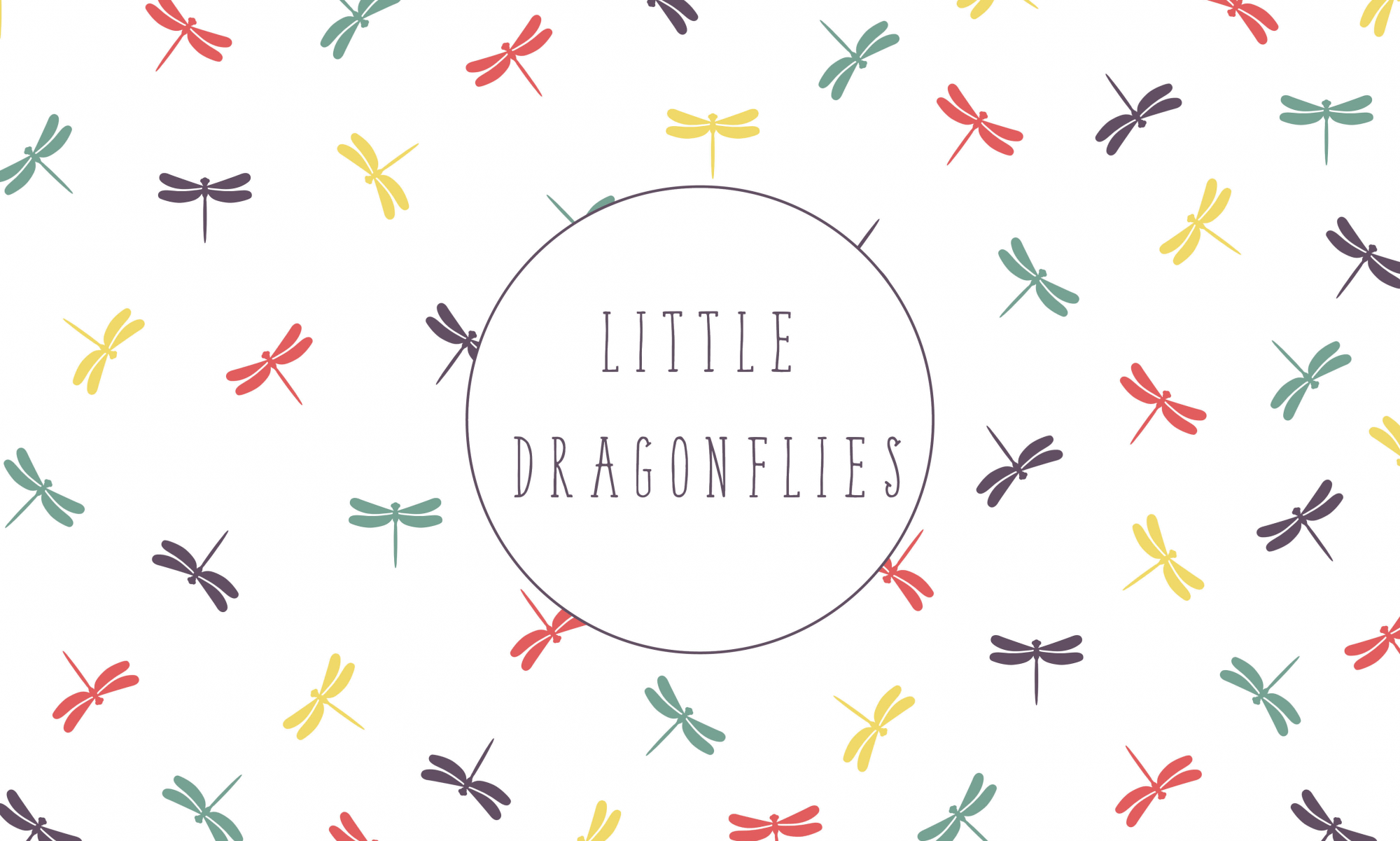 Little Dragonflies Childcare